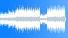 Happy Acoustic Country Arkistomusiikki
