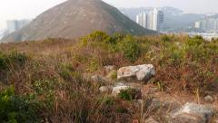 POV walk at hill of small island, dried bush tangle, mountain landscape ahead Stock Footage