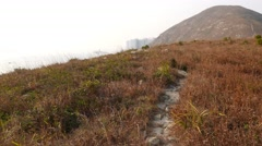 Trodden path lie over dry grass on top of island, small uninhabited Ap Lei Pai Stock Footage