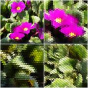 Pink flowers on the grass. Collection of abstract multicolored backgrounds Stock Illustration