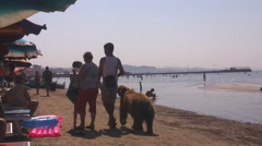 Merchants with bear on the beach - stock footage