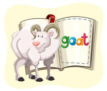 Goat with white fur and a book Piirros
