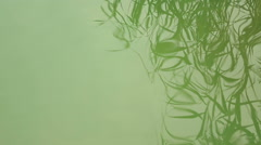 Abstraction beautiful reflection at the Lake Stock Footage