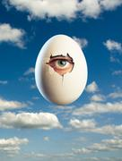 Egg isolated on blue background with eye inside Stock Photos