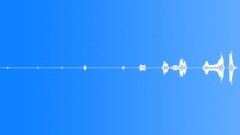 Camel Groans Sound 4 - sound effect