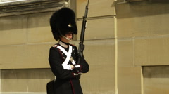 Danish royal guard at work Stock Footage
