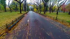 Aerial fly-by of New York City Central Park's Literary Walk Stock Footage