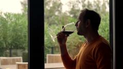 Happy man drinking wine sitting by window at home HD - stock footage