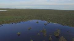 Day light summer time lake aerial panorama belarus Stock Footage