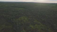 Endless meadow summer twilight aerial panorama belarus Stock Footage
