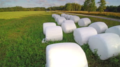 The white rolled haystack on the green field Stock Footage