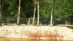 Palm Trees over a Washed out Drainage Canal near the Beach Stock Footage