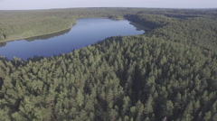 Pine forest lake summer day aerial panorama belarus Stock Footage