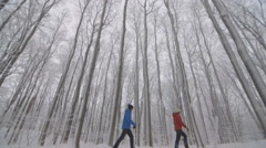 Snowshoeing in winter wonderland. Arkistovideo