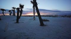 Sunrise with hammock on beach Stock Footage