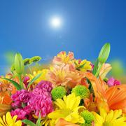 Flowers and bluesky bacground Stock Illustration