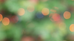Colorful bokeh of Christmas lights tree. Static Stock Footage