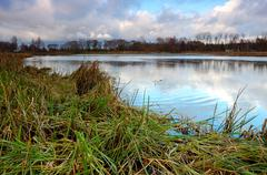 Stock Photo of the lake with a reed in autumn cloudy weather