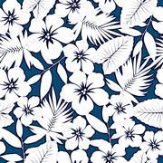 White hawaiian hibiscus. - stock illustration