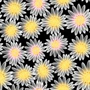 White daisy flower in a seamless pattern Stock Illustration