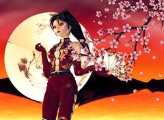 Asian Girl with Sakura Stock Illustration