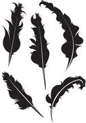 Set of five vector silhouette of feathers Stock Illustration