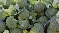 Fresh broccoli at market Stock Footage