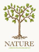 Tree Nature Symbol Stock Illustration