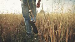 Man runs through field with hight grass, summer, graded - stock footage
