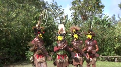 Stock Video Footage of Huli wigmen dancing.