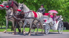 Coachman and a married couple on a carriage - stock footage