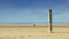 Weatherworn pillar at the beach Stock Footage