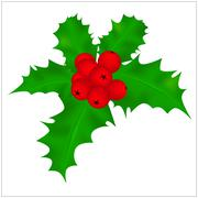Holly berry, Christmas leaves and fruits icon, symbol, design. Winter vector  - stock illustration