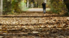 Man walking on trail covered in leaves - stock footage