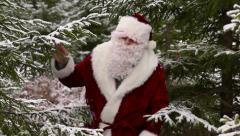 Santa Claus in the woods - stock footage