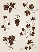 grape vine design elements - stock illustration