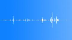 Intestine Gore Movement 2 - sound effect
