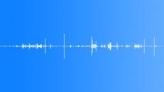 Intestine Gore Movement 5 - sound effect