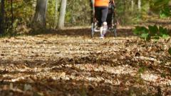 Stock Video Footage of Woman jogging with stroller on leafy trail