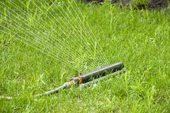 Irrigation sprinkler watering grass - stock photo
