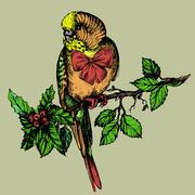 Parakeet with bow and mistletoe sitting on brunch - stock illustration
