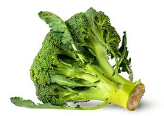 Big broccoli florets with leaves - stock photo