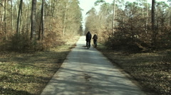 Germany in autumn. road in the woods, people ride bikes - stock footage