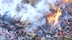 burning fire and smoke - stock footage