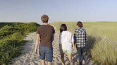 Group Of Multiethnic Teens Walk Along Sandy Beach Path Stock Footage