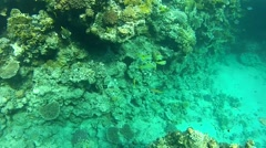 Submarine illusion.mp4 - stock footage