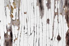 Texture with peeling paint - stock photo