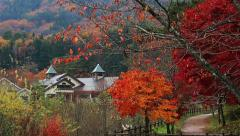 Hot springs in autumn mountains. Stock Footage
