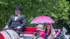 Coachman in a carriage - stock footage