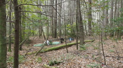 Family Tent Camping In The Woods Stock Footage